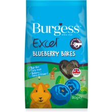 BURGESS PET CARE BURGESS EXCEL VÄIKELOOMA...