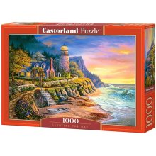 Castor Puzzle 1000 pcs - Lighting the way