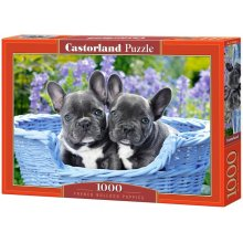 Castor Puzzle 1000 pcs - French Bulldog...