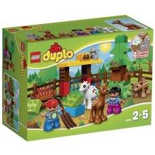 LEGO Duplo Leśne zwierzęta