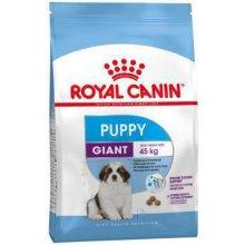 Royal Canin Giant Puppy 15kg (SHN)