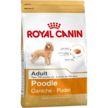 Royal Canin Poodle Adult 0,5kg