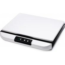 Skänner Avision Flatbed scanner FB5000, A3