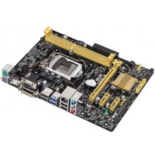 Emaplaat Asus H81M-A, DDR3-SDRAM, DIMM...