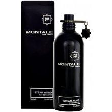 Montale Paris Steam Aoud, EDP 100ml, parfüüm...