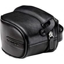 OLYMPUS SP кожаный Bag M