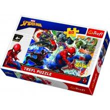 Spider-Man PUSLE 60 ÄMBLIKMEES