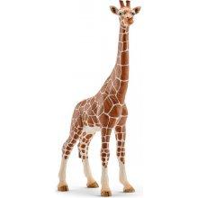 Schleich Female giraffes
