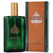 Aspen Aspen, Cologne 118ml, Cologne meestele