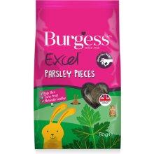 BURGESS PET CARE BURGESS EXCEL VÄIKELOOMA...