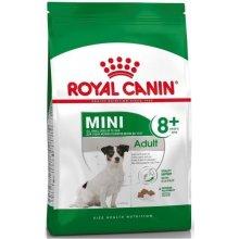 Royal Canin Mini Adult 8+ 0,8kg (SHN)