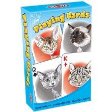 TACTIC Karykatury Kotów karty do gry