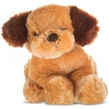 Axiom Dog Dogs коричневый коричневый 23 cm
