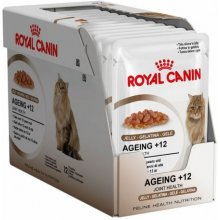 Royal Canin FHN AGEING +12 in Jelly 12x85G