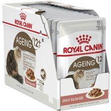 Royal Canin Ageing +12 - Gravy / Sauce -...