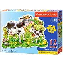 Castor 12 MAXI Krowy na łące