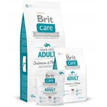 Brit Care Grain-free Adult Salmon & Potato...