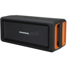 Колонки Grundig Bluebeat GSB 120