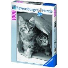 RAVENSBURGER RAVEN. 1000 EL. Zabawa w...