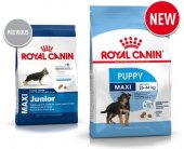 Royal Canin Maxi Junior / Puppy 4kg (SHN)