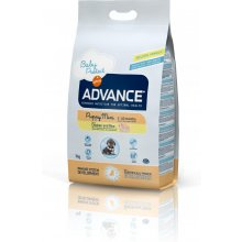 ADVANCE Mini Puppy Protect Chicken и R 3,0kg