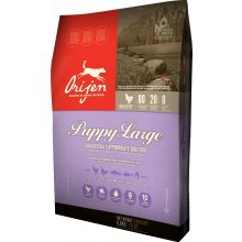 Orijen Dog Puppy Large 13kg