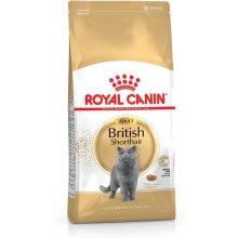 Royal Canin British Shorthair kassitoit 10...