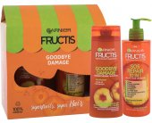 Garnier Fructis Goodbye Damage Set