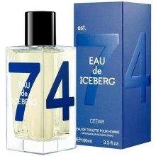 Iceberg Eau de Iceberg Cedar 100ml - Eau de...