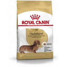 Royal Canin Dachshund Adult 1,5kg (BHN)