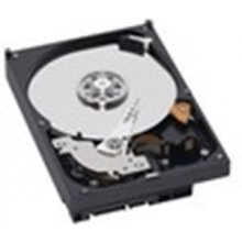 DELL HDD 1TB SATA 7200 RPM, 1000 GB, HDD