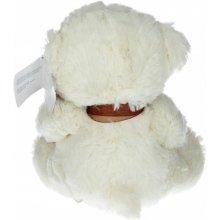 Axiom Teddy Bear Gift, белый