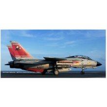 Revell F-14D Super Tomca t