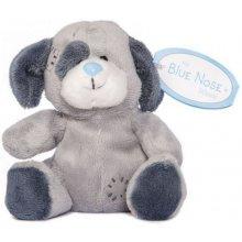 Carte Blanche Blue Nose Dog