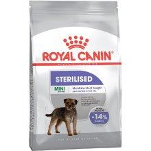 Royal Canin Mini Sterilised - 1kg (CCN)