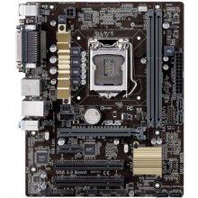 Emaplaat Asus Chipset Intel® H81