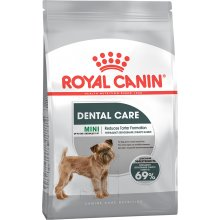 Royal Canin Mini Dental Care - 1kg (CCN)