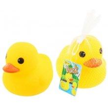 Symag TOITOYS Duck для the bath
