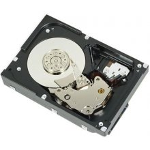 "DELL HDD 3.5"" / 2TB / 7.2k / SATA / Cabled -..."