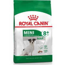Royal Canin Mini Adult 8+ 2kg (SHN)