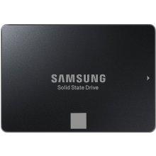 Kõvaketas Samsung SSD 750 Evo 2,5 120GB SATA...