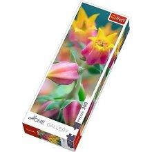 TREFL 300 elements, Flower Blossoms