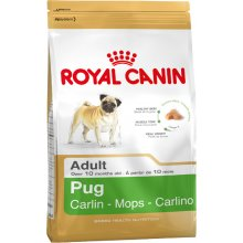 Royal Canin Pug Adult 0,5kg