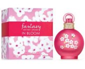 Britney Spears Fantasy in Bloom EDT 100ml -...