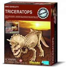 4M Triceratops excavations