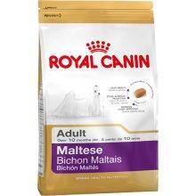 Royal Canin Maltese Adult 0,5kg