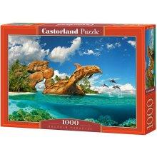 2bd676c21d0 Castor land Dolphin Paradise 103508 - OX.ee