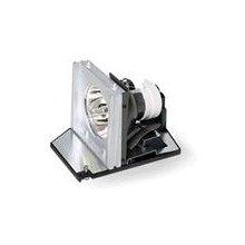 Acer EC.J2901.001 Projektorlampe