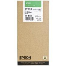Tooner Epson tint cartridge roheline T 596...
