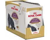 Royal Canin kassitoit British Shorthair -...